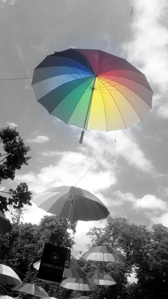 Turău Alexandra - Umbrella