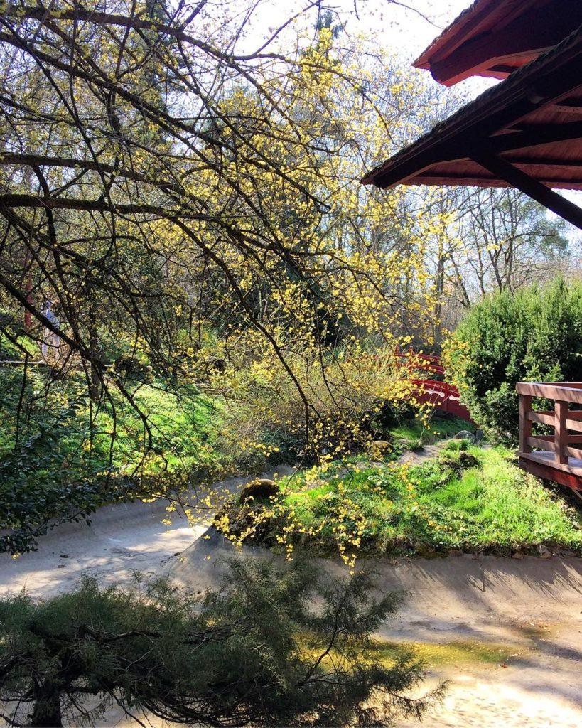 Unde ne relaxăm în Cluj