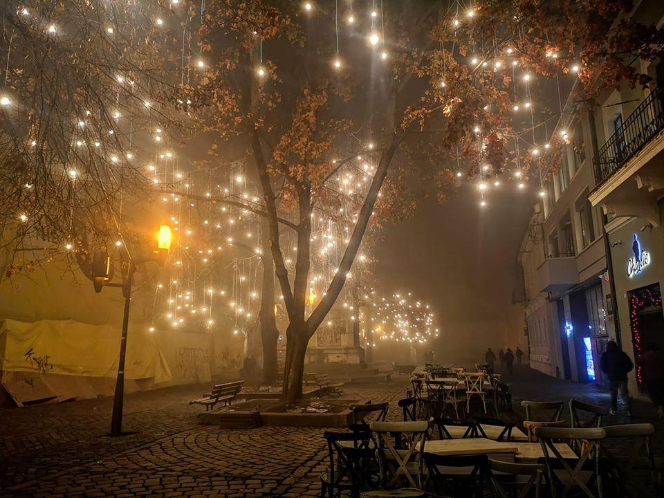 Zoly Zelenyak ceata fotografii decembrie