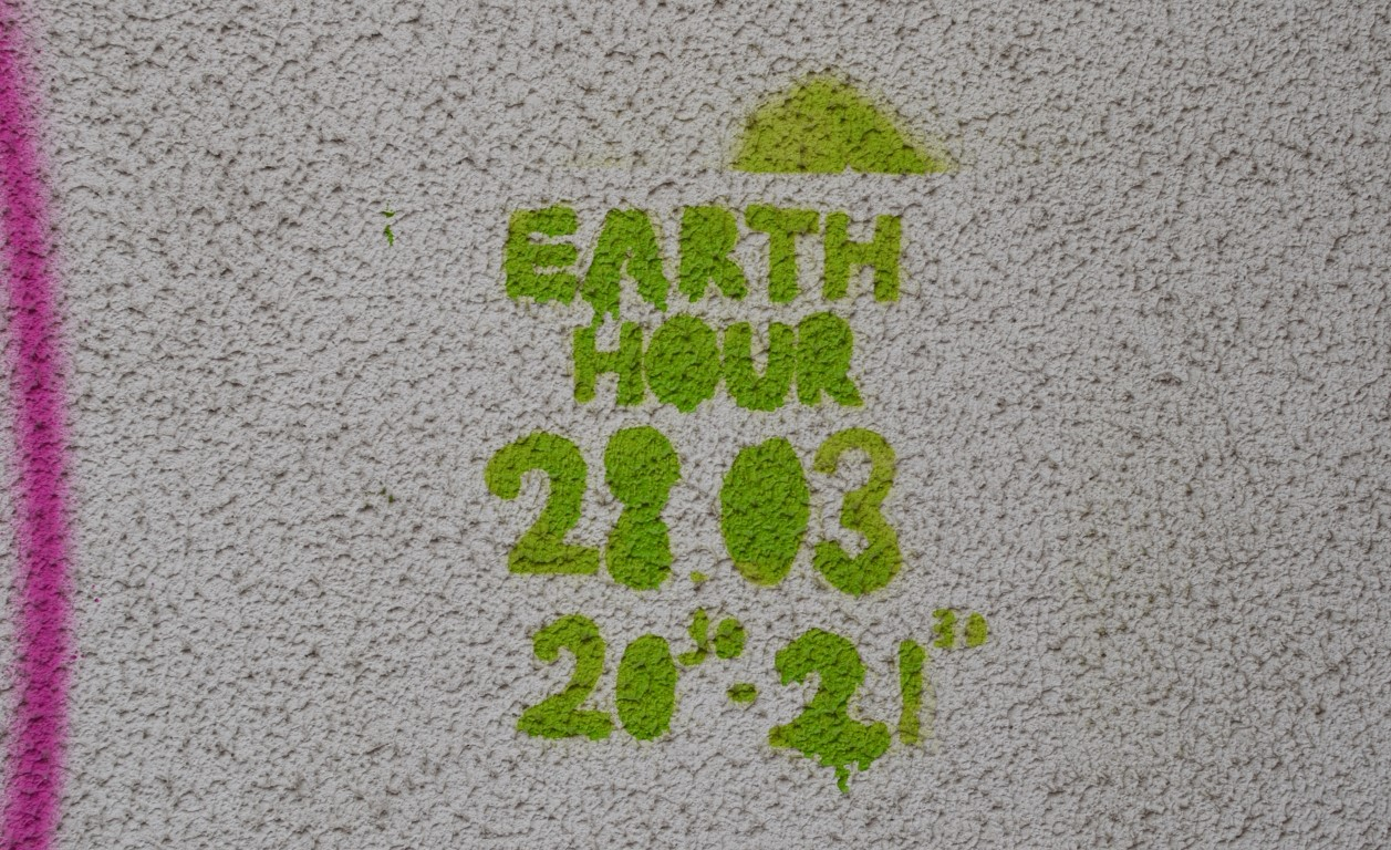 arta stradala in cluj vandalizarea cladirilor (17) (Medium)
