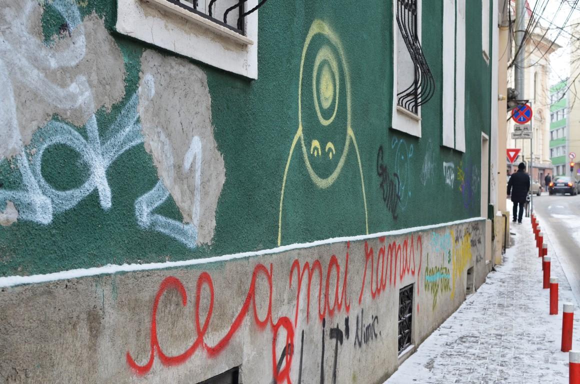 arta stradala in cluj vandalizarea cladirilor (36) (Medium)