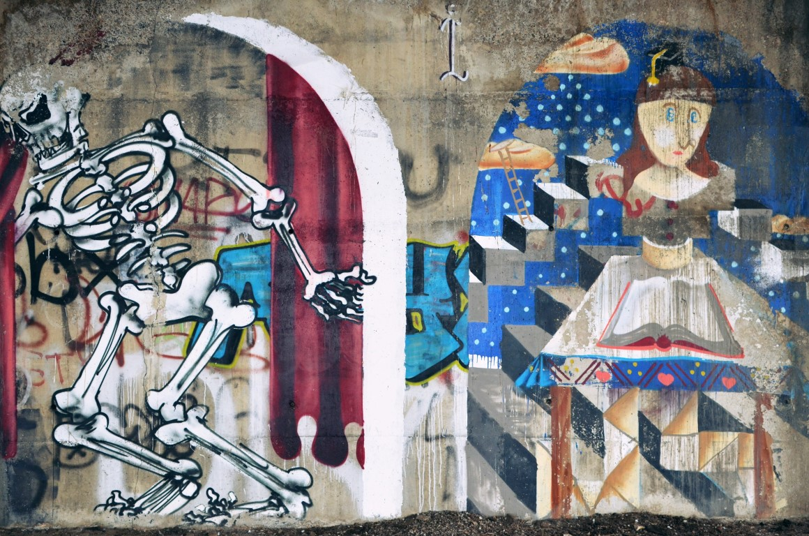 arta stradala in cluj vandalizarea cladirilor (7) (Medium)