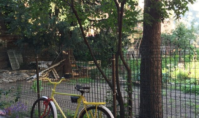 bicicleta si levan
