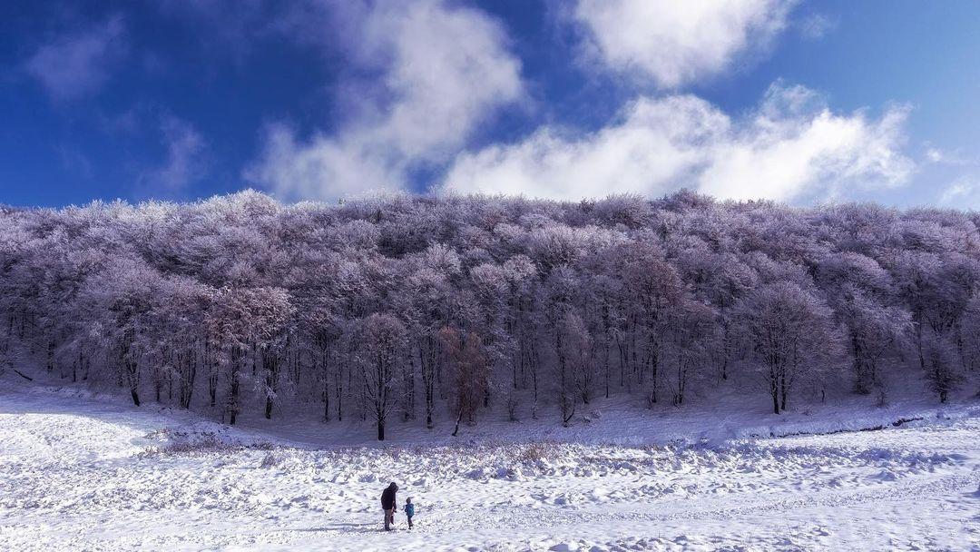 prima ninsoare copii