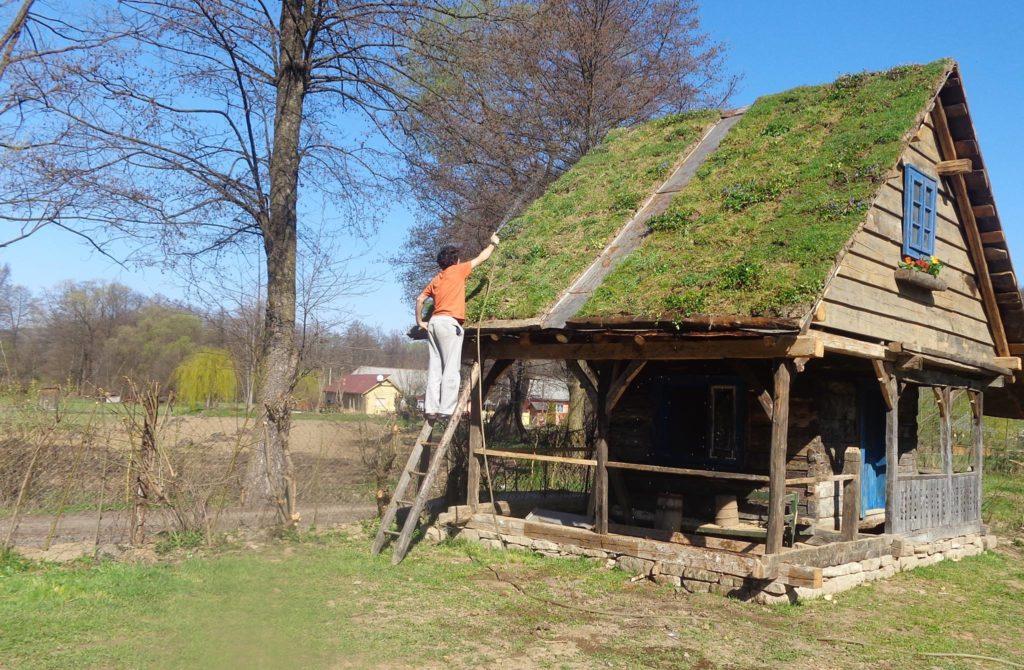 case din lemn vechi (7)