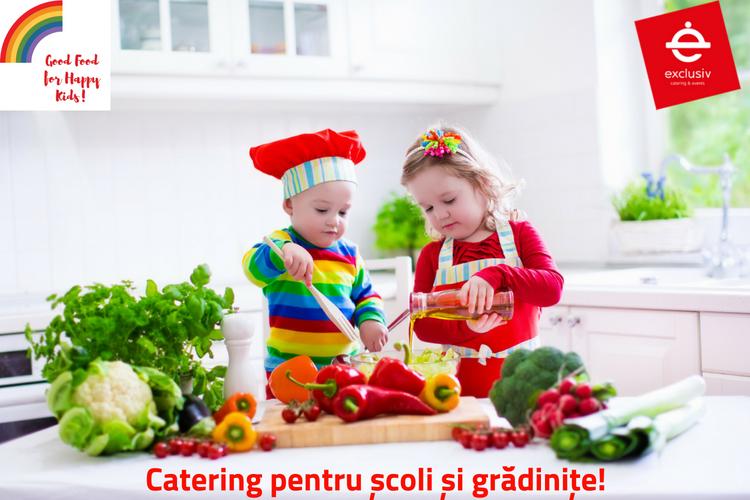 catering scoli gradinite cluj