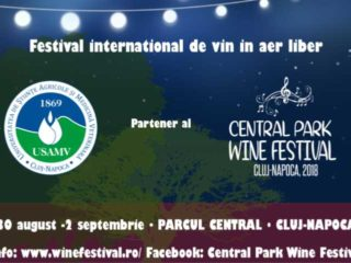 Primul festival de vin în aer liber, la Cluj | Central Park Wine Festival