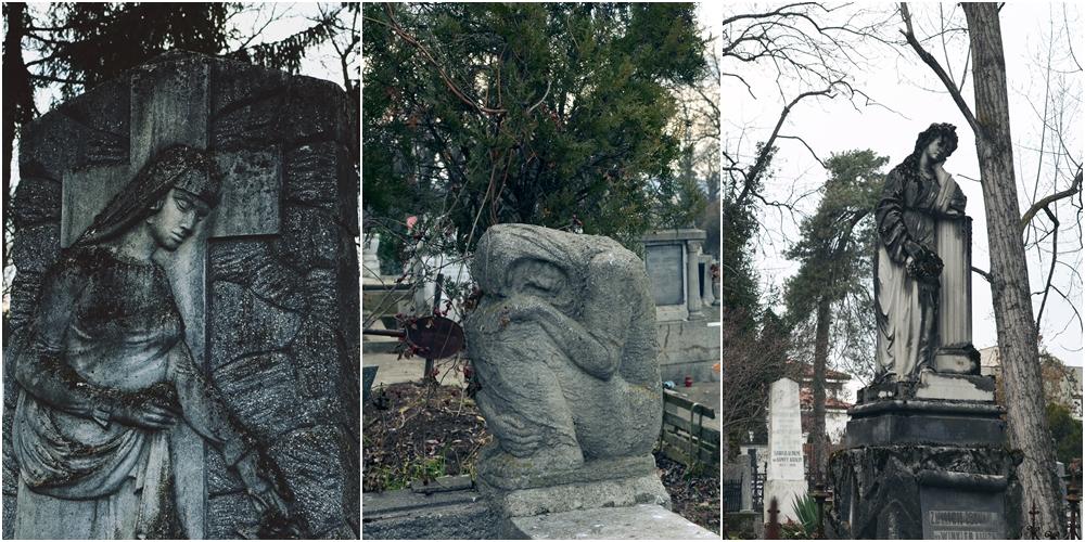 cimitirul central din cluj lala 2