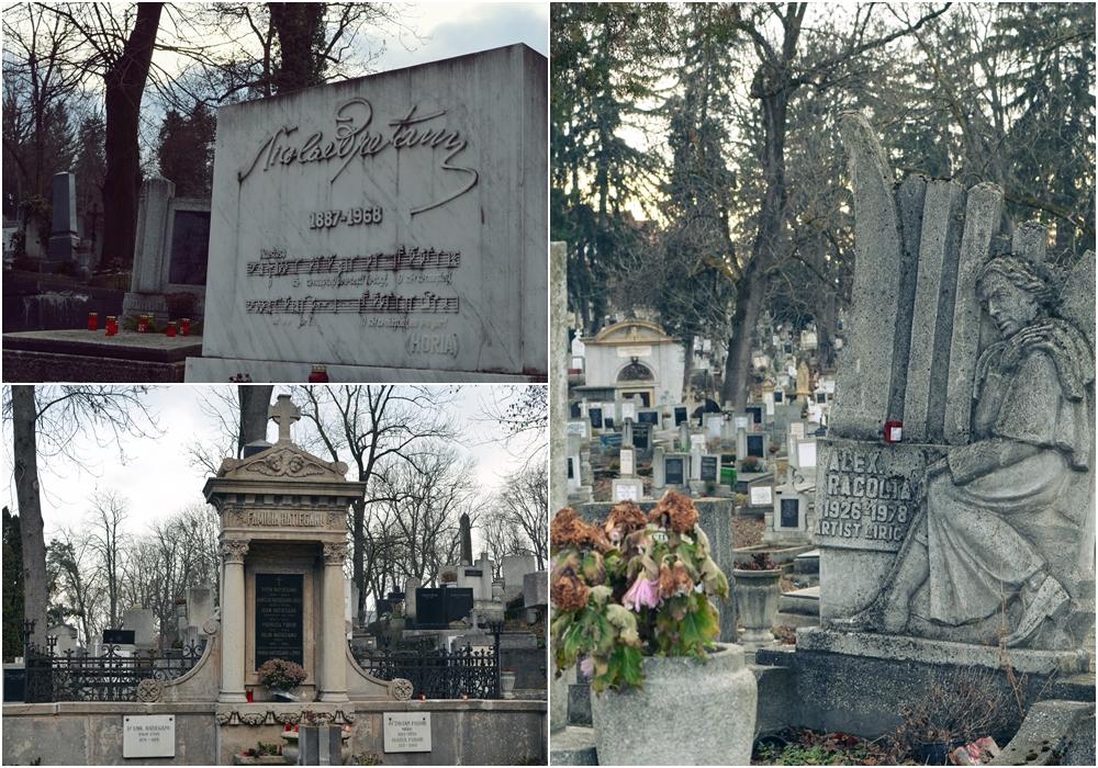 cimitirul central din cluj lala perso