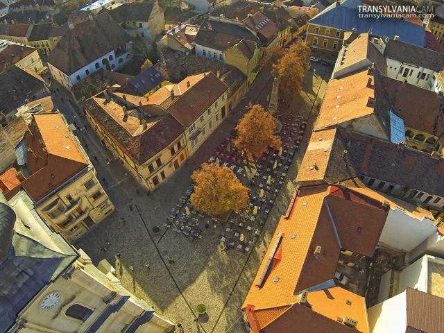 Piața Muzeului Cluj