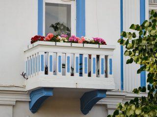 Clujul cu flori 2020: un concurs pentru înfrumusețarea Clujului