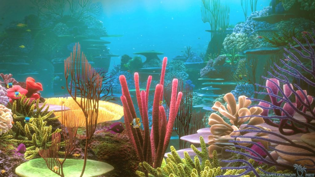 colorful_nature_coral_reef
