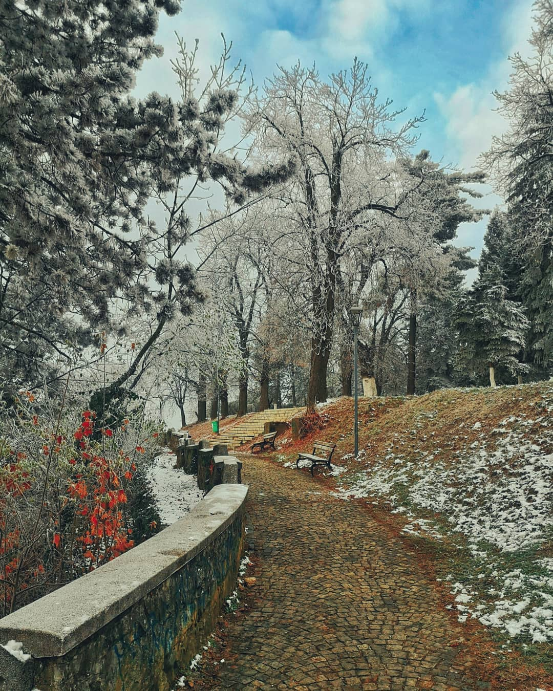 cosmin.oana fotografii din decembrie