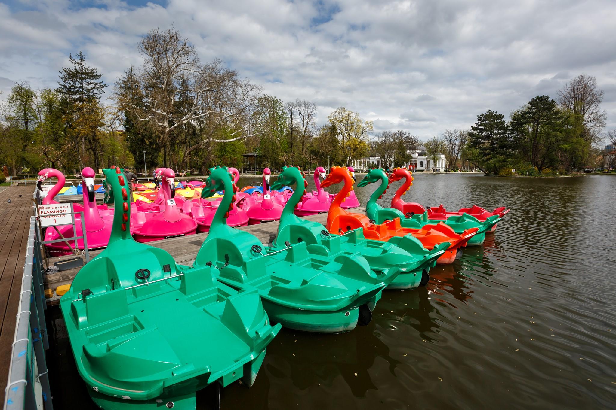 cu barca pe lac Cluj (2)