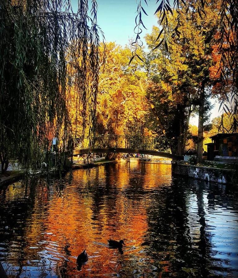 parc 13 fotografii de octombrie