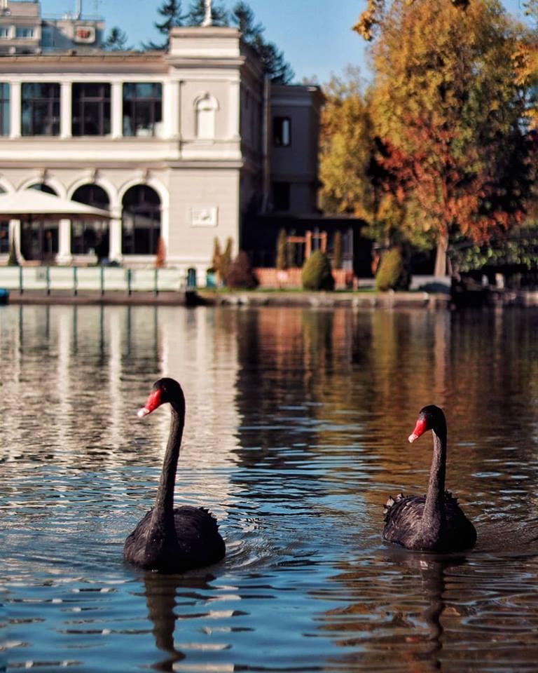 lac 13 fotografii de octombrie