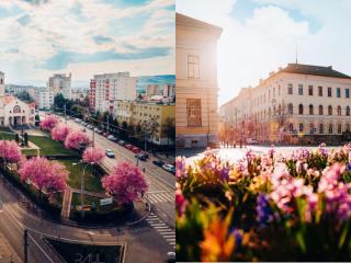Program de weekend în Cluj: evenimente 14-16 mai 2021