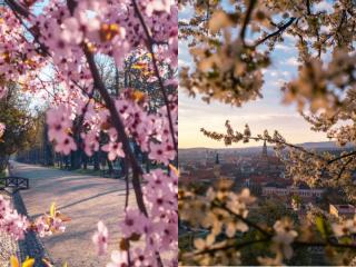 Program de weekend în Cluj: evenimente 30 aprilie-2 mai 2021