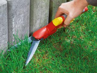 Instrumente necesare pentru a întreține via și gazonul
