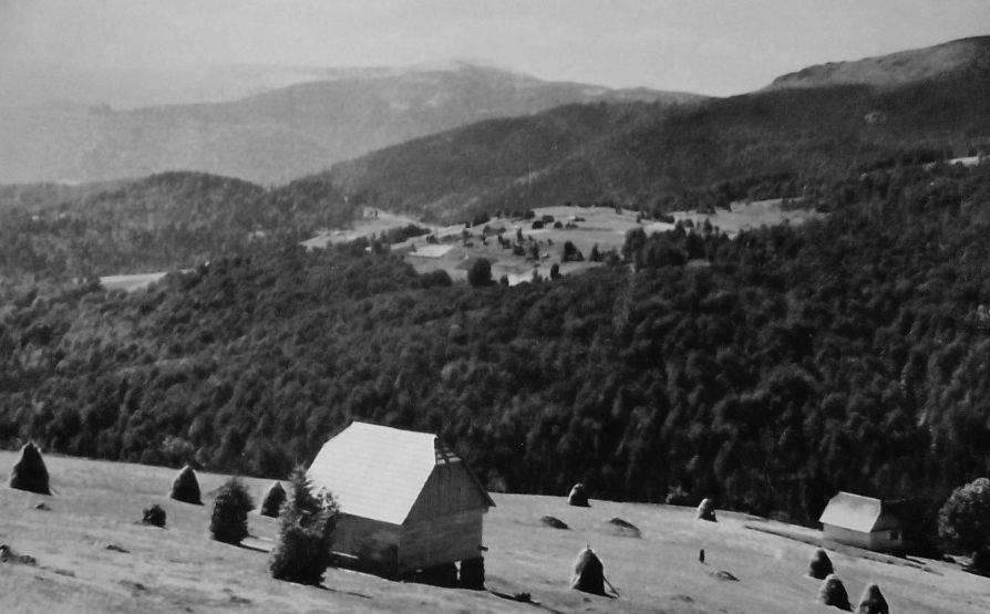 fotografii istorice din judet (1)