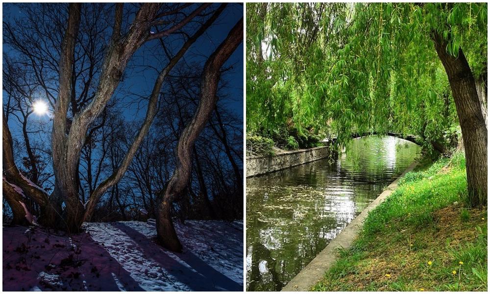 Încă vreo 5 motive să vizitezi Clujul