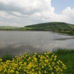 Lac Taga
