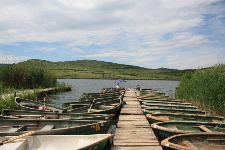 lacul stiucii de la sacalaia