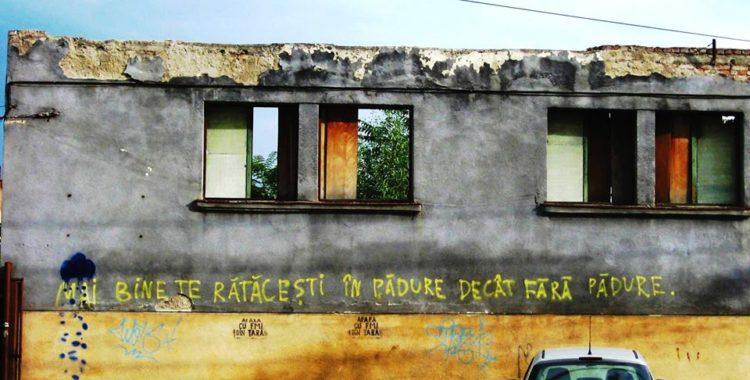 luminita bercean graffiti street art cluj
