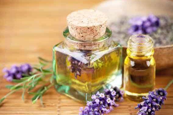 meloterapie și uleiuri esențiale (1)