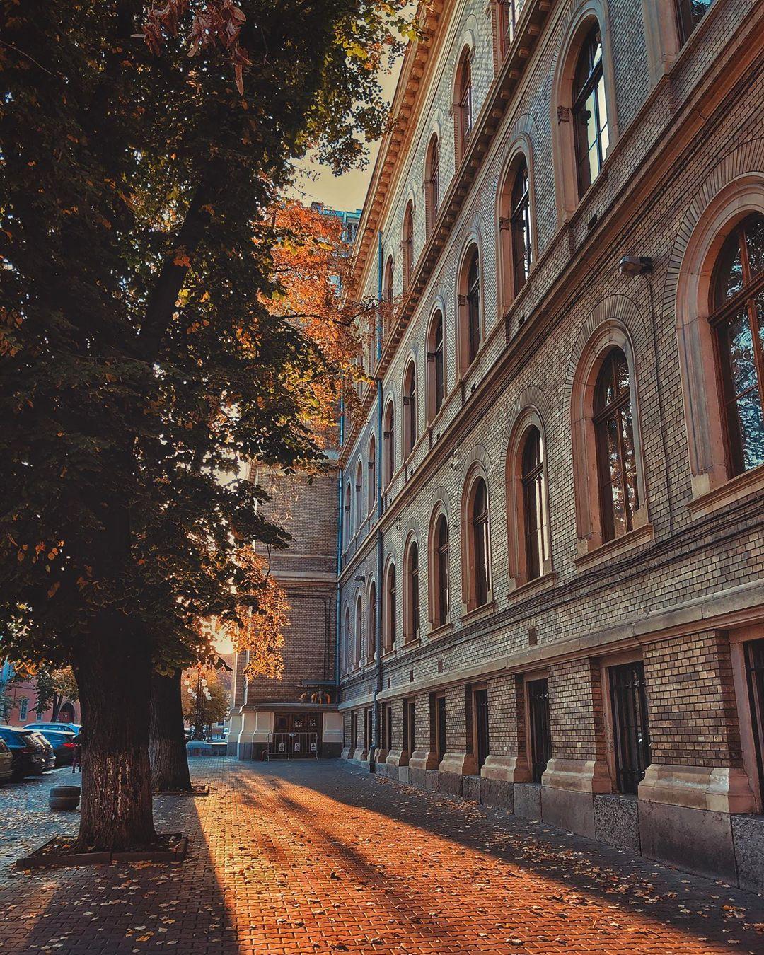 miriam.kenyeres Clujul in 13 fotografii ale lunii octombrie 2019