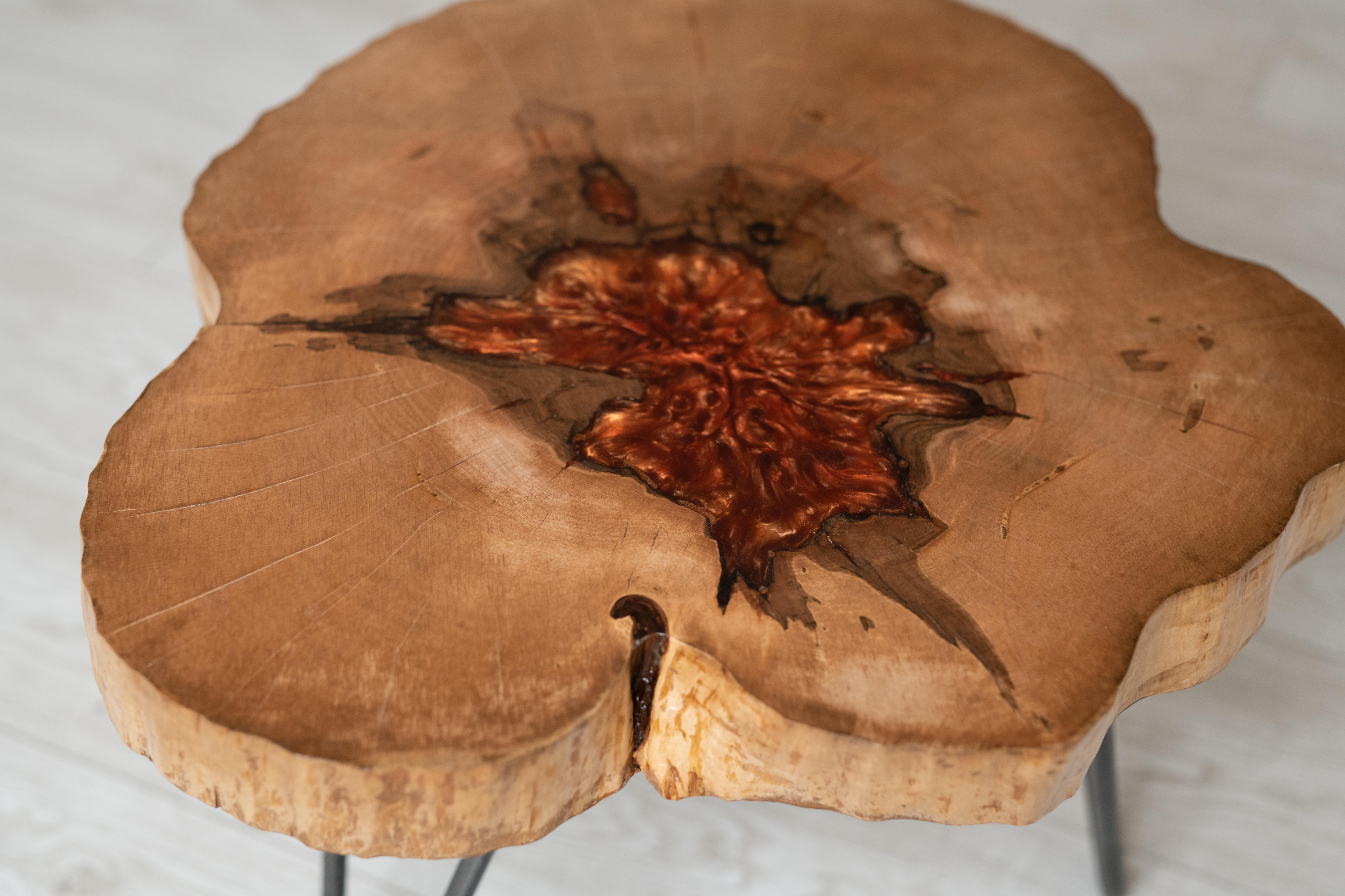 mobilier unicat moth (2)