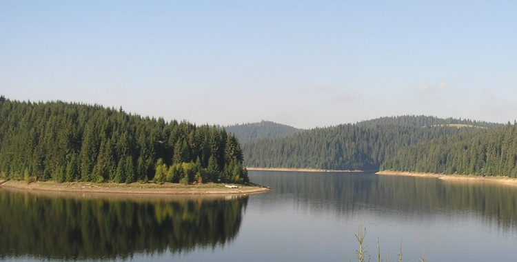 navigație pe Tarnița
