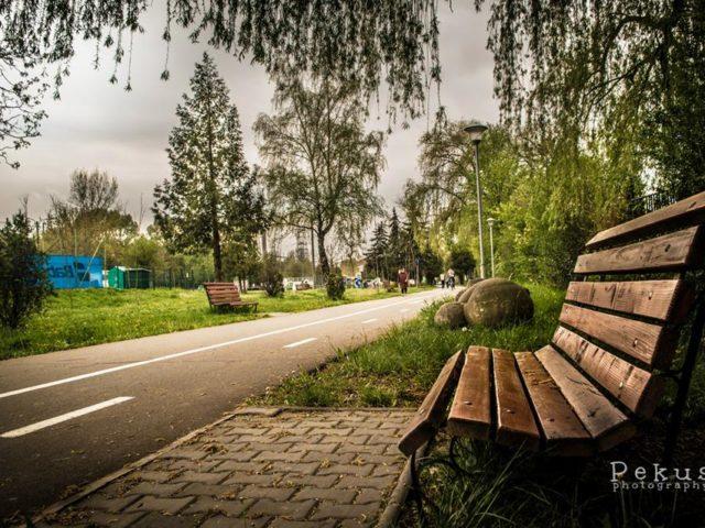 Parcul Rozelor Cluj Napoca