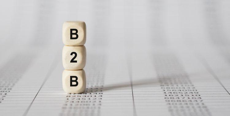 platforma b2b