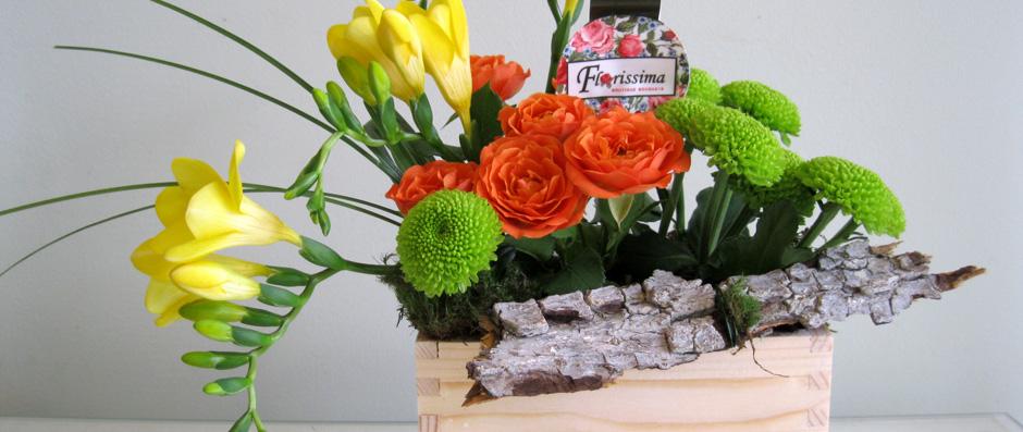 Floraria Florissima