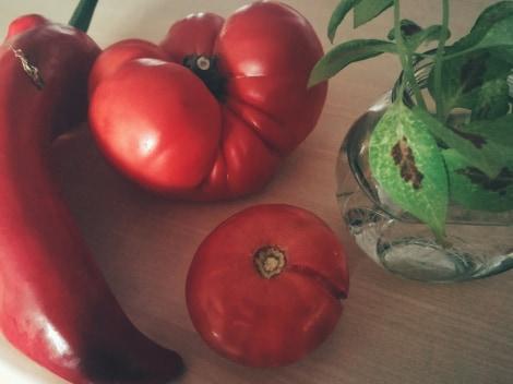 rosii desaga cu legume