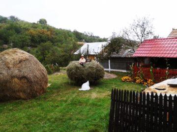 satul corpadea comuna apahida judetul cluj