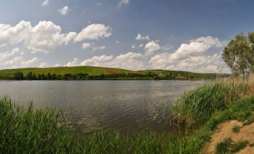 Transylvanian Delta
