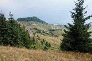 View along the Tarina Tour