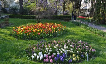 Le Jardin Botanique « Alexandru Borza »