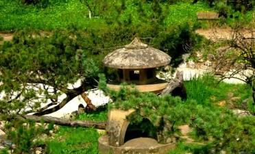 Le Jardin Botanique «Alexandru Borza»