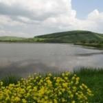 La Delta des Transylvains
