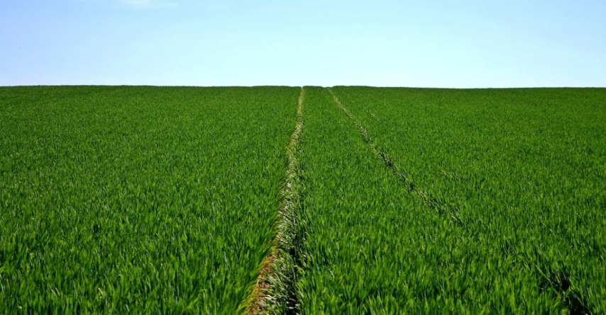 Smart farming și sustenabilitatea