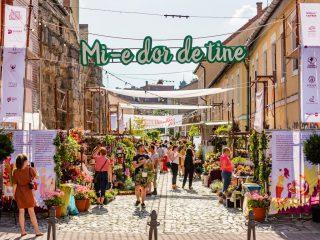 """Strada Potaissa devine """"Piața de flori altfel"""" și în această vară"""