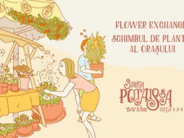 strada potaissa schimb de flori