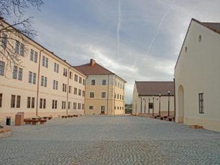 Cetatea din Oradea, Tudor Vâșcan