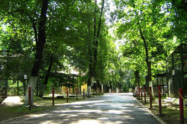 Grădina Zoologică Oradea