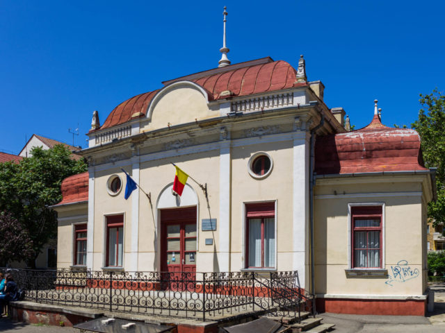 Muzeul Memorial Ady Endre Oradea, Alexandru Ion