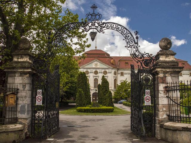 ferestre head Palatul Episcopal Romano-Catolic din Oradea