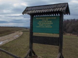 Lacul Cicoș din Săcueni 29